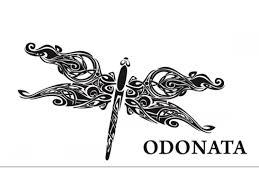 odonata winery logo